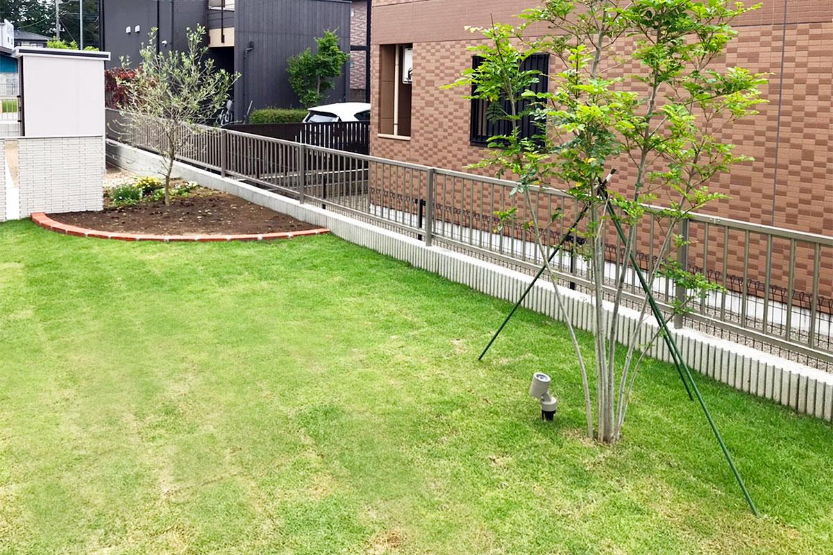 植栽 フェンス
